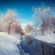 Winter  in the city park — Stock Photo #57983679