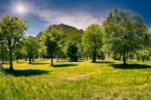 Park in typical italian village — ストック写真