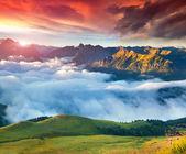 Val di Fassa valley with passo Sella. — Stock Photo