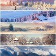 Winter collage — Stock Photo #58518747