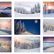 Collage with 9 different Christmas landscapes. — Stock Photo #58518757