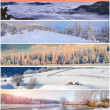 Winter collage — Stock Photo #58518781