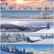 Winter collage — Stock Photo #58518975