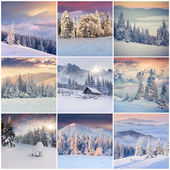 Collage de l'hiver — Photo