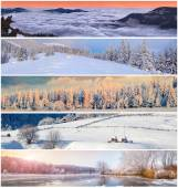 Collage de invierno — Foto de Stock