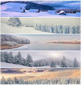 Winter collage — Stock Photo