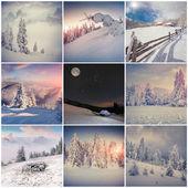 Collage di inverno — Foto Stock