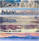 Collage de invierno — Foto de Stock