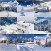 9 square Christmas landscapes. — Stock Photo