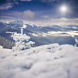 Foggy morning landscape in the winter mountains — Stock Photo #59394489