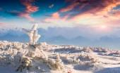 Frozen small fir tree in winter mountains at sunset — Stock Photo