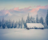 Old ranch after huge snowfall — Stock Photo