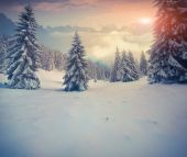 Beautiful winter sunrise in the mountains. — Stock Photo