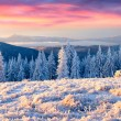 Winter sunrise in the mountains — Stock Photo #59957613