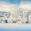 Winter landscape in mountain village — Stock Photo #59957633
