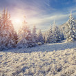 Winter morning in the mountains. — Stock Photo #59957921