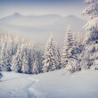 Hoarfrost and snow in mountains — Stock Photo #59957923