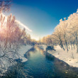 Winter sunrise in the city park. — Stock Photo #59958051