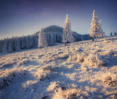 Winter sunrise in the mountains. — Stock Photo