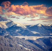 Winter alpine sunset — Stockfoto