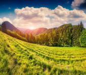 Landscape in the italian alps. — Stockfoto
