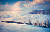 Winter  in the foggy mountains. — Stock Photo