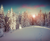 Winter sunrise in the mountains. — Foto de Stock