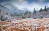 Colorful winter morning in mountains — Stockfoto