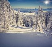 Snow in mountains. — Stock Photo
