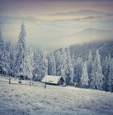 Winter  in the mountain farm. — Stock Photo