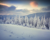 Foggy winter sunrise — Stock Photo