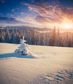 Sunrise in mountains. — Stock Photo