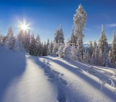 Morning in the mountain — Stock Photo