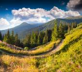 Landscape in the mountain pass — Stock Photo