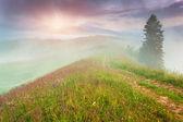 Lever du soleil l'été brumeux — Photo