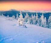 Winter mountains at sunrise — Stockfoto