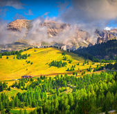 Foggy summer morning in Italy Alps — Stock Photo
