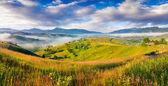 Karpat dağ köyü. — Stok fotoğraf