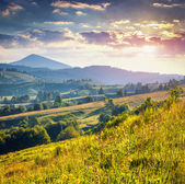 Summer morning in mountains — Stock Photo