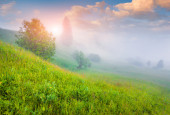 Sunrise in the foggy valley. — Stock Photo