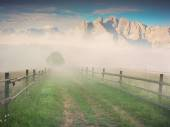 Misty morning in the mountain village — Stock Photo