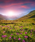 Sunrise in the Caucasian mountains — Stock Photo