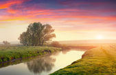 Summer sunrise on the river — Stock Photo