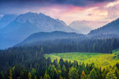 Cresta di Enghe mountain range at foggy summer morning. — Stock Photo