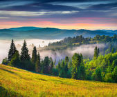 Sunrise in the Carpathian mountains. — Stock Photo