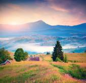 Panorama of the morning mountains — Stock Photo