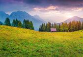 Morning in the italian Alps — Stock Photo