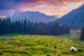 Dağ silsilesi sisli yaz sabahı. — Stok fotoğraf