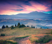 Sunrise in the Carpathian mountains. — Stock Photo