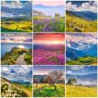 9 square summer landscapes — Stock Photo #68233081